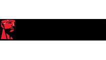 Kingston-logó